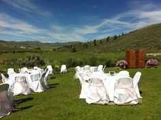 backyard wedding reception blush ivory gold