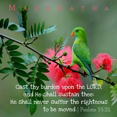 Psalms 55:22 (KJV)  - Cast thy burden upon the Lord, and He shall sustain thee; He shall never suffer the righteous to be moved.