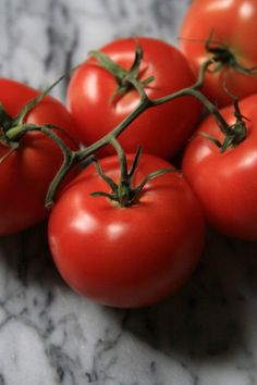 The city that I live in promises to have everything, and yet, each winter there is a certain dearth of palatable tomatoes. Gardening For Beginners, Gardening Tips, Vegetable Painting, Food Poisoning, Reflection Photography, Tomato Garden, Stop Eating, Garden Inspiration, Organic Gardening