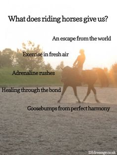 The truth on what horses give us riders