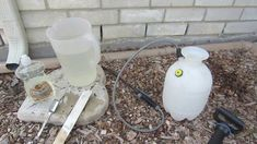 Homemade Insecticidal Soap Spray Recipe - Aphids, White Flies, Spider Mites, etc.