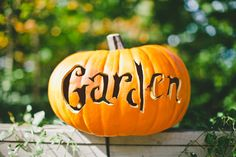 Haunted Pumpkin Garden and Pumpkin Carving at NYBG the New York Botanical Garden