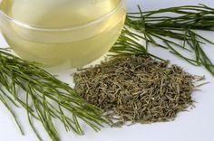 Pravidelnému popíjaniu prasličky roľnej sa poďakujete aj za to, že bolesti kĺbov nikdy neokúsite! Máte poškodené medzistavcové platničky alebo sa obávate o prostatu? Stavte na sedací kúpeľ. Healing Herbs, Medicinal Herbs, Herb Garden, How To Dry Basil, Health Fitness, Detox, Food, Gardening, Tips
