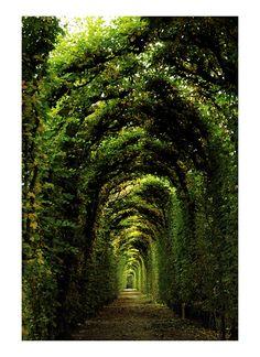 I would so love to take a walk here.