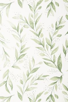 Magnolia Home Olive Branch Wallpaper Professional consultation and installation recommended. SureStrip allows for paste-free application and easy removal. Magnolia Homes, Cute Wallpaper Backgrounds, Cute Wallpapers, Iphone Wallpaper Grey, Simple Backgrounds, Magnolia Wallpaper, Temporary Wallpaper, Jolie Photo, Gold Art