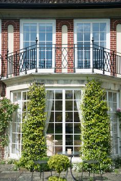 Clement Windows design, manufacture and install superb quality steel windows and metal windows. View our superb range of windows today. Double Patio Doors, French Doors Patio, Sliding Patio Doors, Metal Doors, Timber Windows, Windows And Doors, Types Of Timber, Period Living