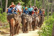 Top 10 Tours in Koh Samui