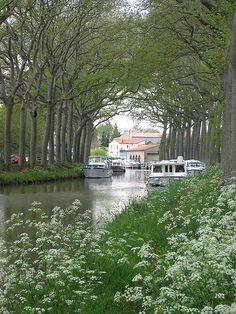 Spring at Trebes, on de Canal du Midi, Languedoc-Roussillon_ France Canal Barge, Canal Boat, Canal Du Midi, Sailboat Art, French Countryside, South Of France, Beautiful Places To Visit, France Travel, Landscape Photography