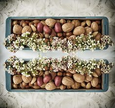 Nut decor - Sofreh Aghd - Bits and Blooms Inc.