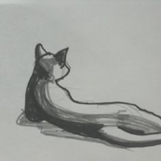 An other cat.