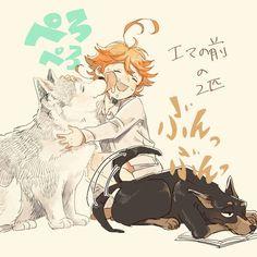 Emma with Shiberian Husky Norman & Doberman Ray Anime Manga, Anime Art, Precious Children, Tsundere, Anime Kawaii, Manga Reader, How To Train Your Dragon, Neverland, Haikyuu