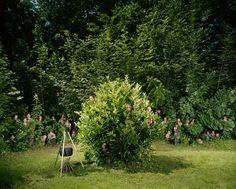 St. Brandan Scout Section - Hobby Buddies by Ursula Sprecher & Andi Cortellini