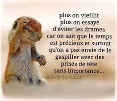 Plus on vieillit - Inspirations pour réussir sa vie Positive Attitude, Positive Quotes, Motivational Phrases, Inspirational Quotes, Online Magazine, Quote Citation, French Quotes, Sweet Words, True Facts
