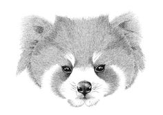 Here we have an A6 greeting card with an enchanting black and white stippling drawing of a Red Panda, which embraces its cute and cuddly nature, while contrasting beautifully against the white card.  This would be a great greeting card for any animal lover.  This is not just a cute little greeting card, it is also a beautiful piece of art in its own right.  Simply frame it and place it on your bedside table or hang it on your wall for an everlasting reminder of you loved ones feelings.  The…