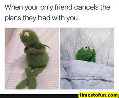 Relationship memes - anxiety kermit meme - Kermit When you get into a stupid argument with bae and want to apologize, but your pride won't let you do that 978 Memes Humor, Funny Humor, Super Funny, Really Funny, Sapo Meme, Taurus Memes, Funny Relationship Memes, Relationship Fights, Kermit The Frog