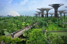 Image result for sustainable city in singapore
