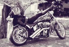 Harley Davidson vintage style