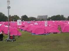 Little pink tents for you and me......