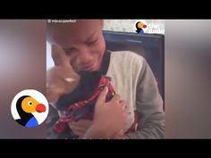 Boy Has Sweetest Reaction When He Learns His Mom Adopted A Dog Video by: Indiana Salome Merali Keep up with this adorable chihuahua, Mia on Instagram: http:/...