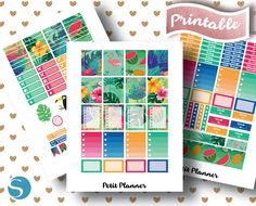 Erin Condren Stickers // Printable Planner // Silhouette Studio Cut File // Cricut PNG // Flamingo // Tropical // Monthly Set // Weekly Kit // Watermelon // Pineapple