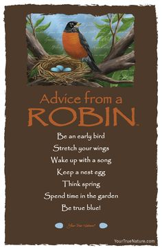 Advice from a Robin- Postcard- Your True Nature