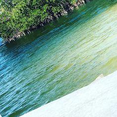 #naturelovers #water #floridakeys