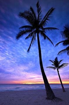 How to Take Good Beach Photos Beautiful Nature Wallpaper, Beautiful Sunset, Beautiful Beaches, Beautiful Landscapes, Nature Pictures, Beautiful Pictures, Hollywood Beach, Sunset Wallpaper, Sky Aesthetic