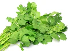 The health benefits of coriander include treatment of swellings, high cholesterol levels, diarrhea, Mouth ulcers, anemia, digestion, menstrual disorders, small pox, eye care, conjunctivitis, skin disorders, blood sugar disorders, etc. Coriander, commonly known as Dhania in the Indian Subcontinent or Cilantro in the Americas and some part of Europe, is an herb which is extensively used around the world as a condiment or as a garnish or as a decoration on the dishes.