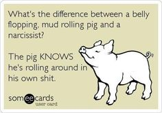 Pig vs Narcissist LOL ...hahahha...in a few cases one is a narcissistic PIG...you can be both!