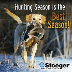 Hunting season is the best season! #Stoeger