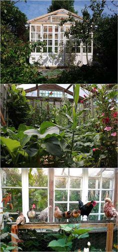 DIY-Greenhouses-apieceofrainbow (6)