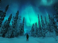 the Best place to spot The Northern Lights Some of world's best Northern Lights can be spotted in Finnish Lapland. The Aurora Borealis – as they are also called – can appear more than 200 nights a year. That's pretty much every winter night.