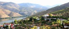 Vale do Douro. Porto, Portugal Portugal, Capa Do Face, Most Beautiful, Culture, River, Outdoor, Sandy Beaches, Wine, Eyes