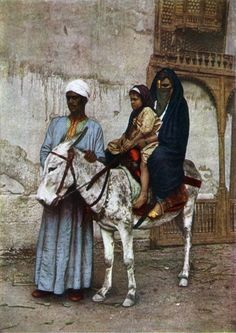 Africa | Donkey with an Egyptian woman and child on its back. | ©National Geographic, Vol 31.  Published in 1917.