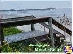 "Greetings from ""The Grand Strand"" and Myrtle Beach, South Carolina! Myrtle, Beautiful Beaches, South Carolina, Great Places, Places To Visit, Map, Travel, Trips, Location Map"