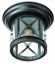 Trans Globe 5128 ROB - 1 Light Flush-mount$47(Porch-2)