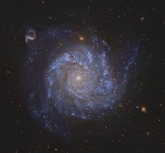 A gorgeous spiral galaxy some 100 million light-years distant, NGC 1309 lies on the banks of the constellation of the River (Eridanus). NGC 1309 spans about 30,000 light-years, making it about one third the size of our larger Milky Way galaxy. Courtesy: Hubble Space Telescope