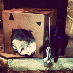Playtime :3 #black #cat # kitten #kitty #babyboy #blackcat #blackkitty #blackkitten #yelloweyes