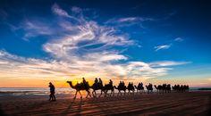 Photo Camel Sunset Australia by Jan Abadschieff on 500px
