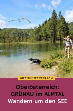 Dog-friendly enjoyment on the Almfluss – Nina Mit Bindestrich – Join the world of pin Heart Of Europe, Dog Friends, Austria, Travel Inspiration, Woodland, Peking, Places To Visit, Adventure, Mountains