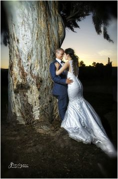 Sunset kiss by the tree on our wedding day