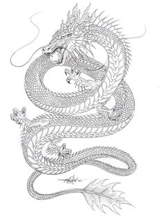 ... dragon tattoos on Pinterest | Chinese dragon Asian dragon tattoo and