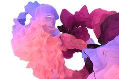 FIELD dynamic digital illustrations