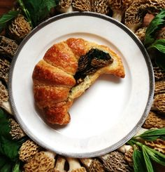 Stuffed Croissant, with Morel Ragout and Nettles