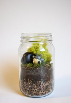 Medium Totoro Studio Ghibli Mason Jar Terrarium My Neighbor Totoro Moss No Maintenance Gift Home Decor Christmas Birthday Handmade Geek Nerd