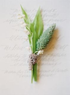 Delicate boutonniere: http://www.stylemepretty.com/2014/02/06/elegant-carmel-wedding-with-photography-by-jose-villa/ | Photography: Jose Villa - http://josevillablog.com/