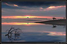 photographer: IGOR ZENIN