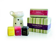 Scentsy bars and warmer in 2004