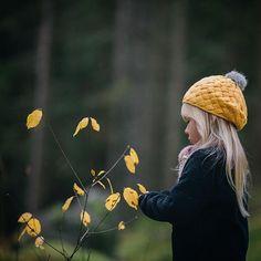 September Song, Autumn Scenery, Autumn Leaves, Dandelion, Seasons, Colours, Fall, Instagram Posts, Nature