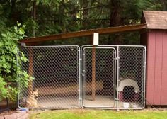 How To Build A Dog Run With Attached Doghouse | Diy Network, Dog And  Backyard